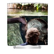Child And Ray Fish In Paludarium Shower Curtain