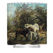 Child And Sheep In The Country Shower Curtain