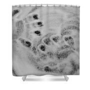 Child Hand Prints Shower Curtain