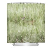 Child Of The Meadows Shower Curtain