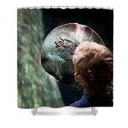 Child Watching Ray Fish Shower Curtain