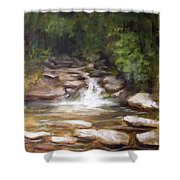 Cooling Creek Shower Curtain