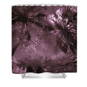 Children 1 Shower Curtain