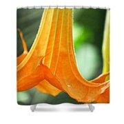 Children's Garden Angel's Trumpet Shower Curtain