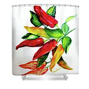 Chillies From My Garden Shower Curtain by Karin  Dawn Kelshall- Best