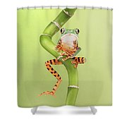 Chilling Tiger Leg Monkey Tree Frog Shower Curtain