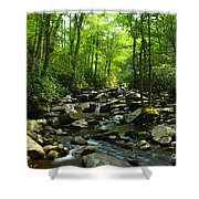 Chimney Tops Trail Shower Curtain
