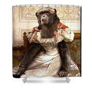 Chimp In Gown  Shower Curtain