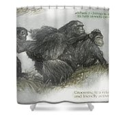 Chimps Sketch Shower Curtain
