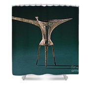 China: Bronze Pitcher Shower Curtain