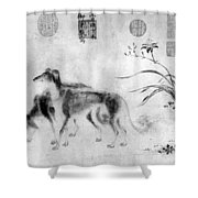 China: Dogs Shower Curtain