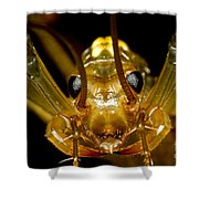 Chinese Cave House Centipede Shower Curtain