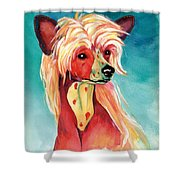 Chinese Crested Sunset Shower Curtain