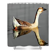 Chinese Goose Shower Curtain