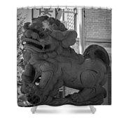 Chinese Guardian Female Lion B W Shower Curtain