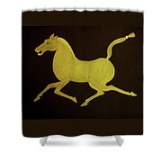 Chinese Horse Shower Curtain