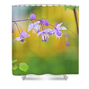 Chinese Meadow Rue Shower Curtain
