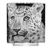 Chinese Panther Shower Curtain