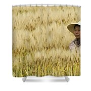 Chinese Rice Farmer Shower Curtain