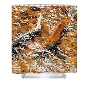 Chinook In Cottage Lake Creek Shower Curtain