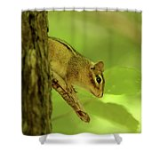 Chip Shower Curtain