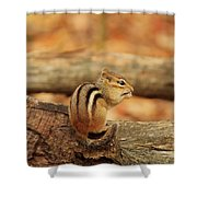Chip On A Log Shower Curtain