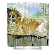 Chisel Shower Curtain