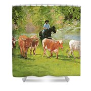 Chisholm Trail Texas Longhorn Cattle Drive Oil Painting By Kmcelwaine Shower Curtain