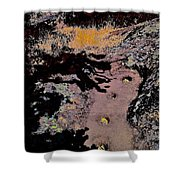 Chitactac Ohlone Site Shower Curtain