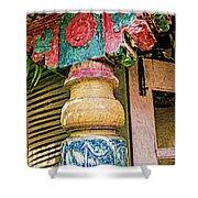 Chitra Museum Goa Shower Curtain