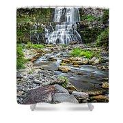 Chittenango Falls In Autumn  Shower Curtain