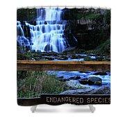 Chittenango Falls State Park Shower Curtain