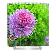 Chive And Bee Shower Curtain