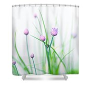 Chives 1 Shower Curtain