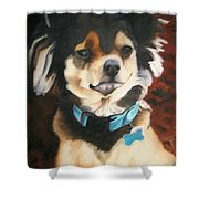 Chiwawa  Shower Curtain