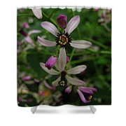 Chock Cherry Flower Shower Curtain