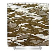 Chocolate And Marshmallows Shower Curtain