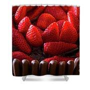 Chocolate And Strawberry Cake Shower Curtain