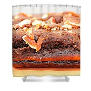 Chocolate Brownie With Nuts Dessert Shower Curtain