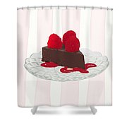 Chocolate Cake On Pink Stripes Shower Curtain