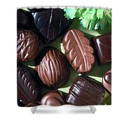 Chocolate Candy Shower Curtain