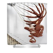 Chocolate Sauce On Whisk Shower Curtain