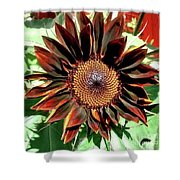 Chocolate Sunflower Shower Curtain
