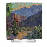Cholla At Smoketree Ranch Shower Curtain
