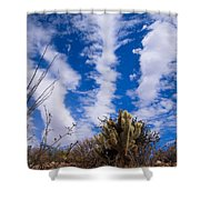 Cholla Blue Sky Shower Curtain