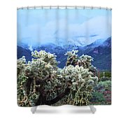 Cholla Cactus And Superstition Mountains Shower Curtain