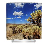 Cholla Cactus Garden In Joshua Tree National Park Shower Curtain