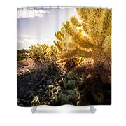 Cholla Cactus Shower Curtain