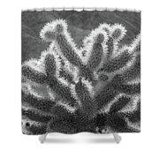 Cholla Cactus Shower Curtain