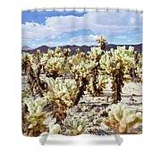 Cholla Desert Garden Shower Curtain